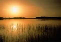 everglades-national-park-92983-ga