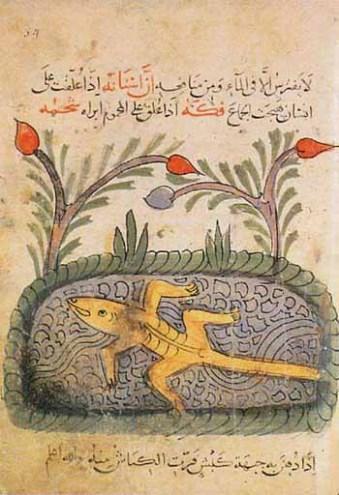 Kitab al-Hayawan. Sebuah kitab berisi ensklopedia berbagai jenis binatang karya ahli ilmu hewan muslim al-Jahiz. Pada kitab ini al-Jahiz memaparkan berbagai macam teori, salah satunya mengenai interaksi antara hewan dengan lingkungannya.
