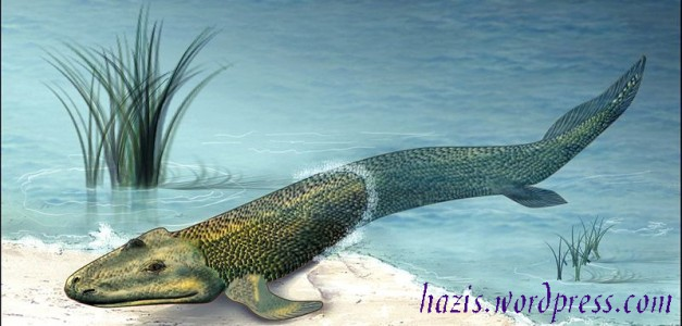 ikan berjalan _'tiktaalik roseae' ikan bertulang belakang di temukan di kutub utara 2004