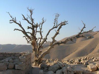 dipercayai di sini terletak makam nabi sulaiman