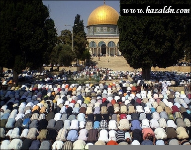muslims-praying-afp-hazem-bader